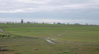 Terreno Rustico