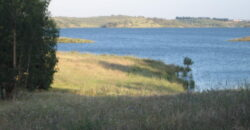 Monte Barragem da Rocha