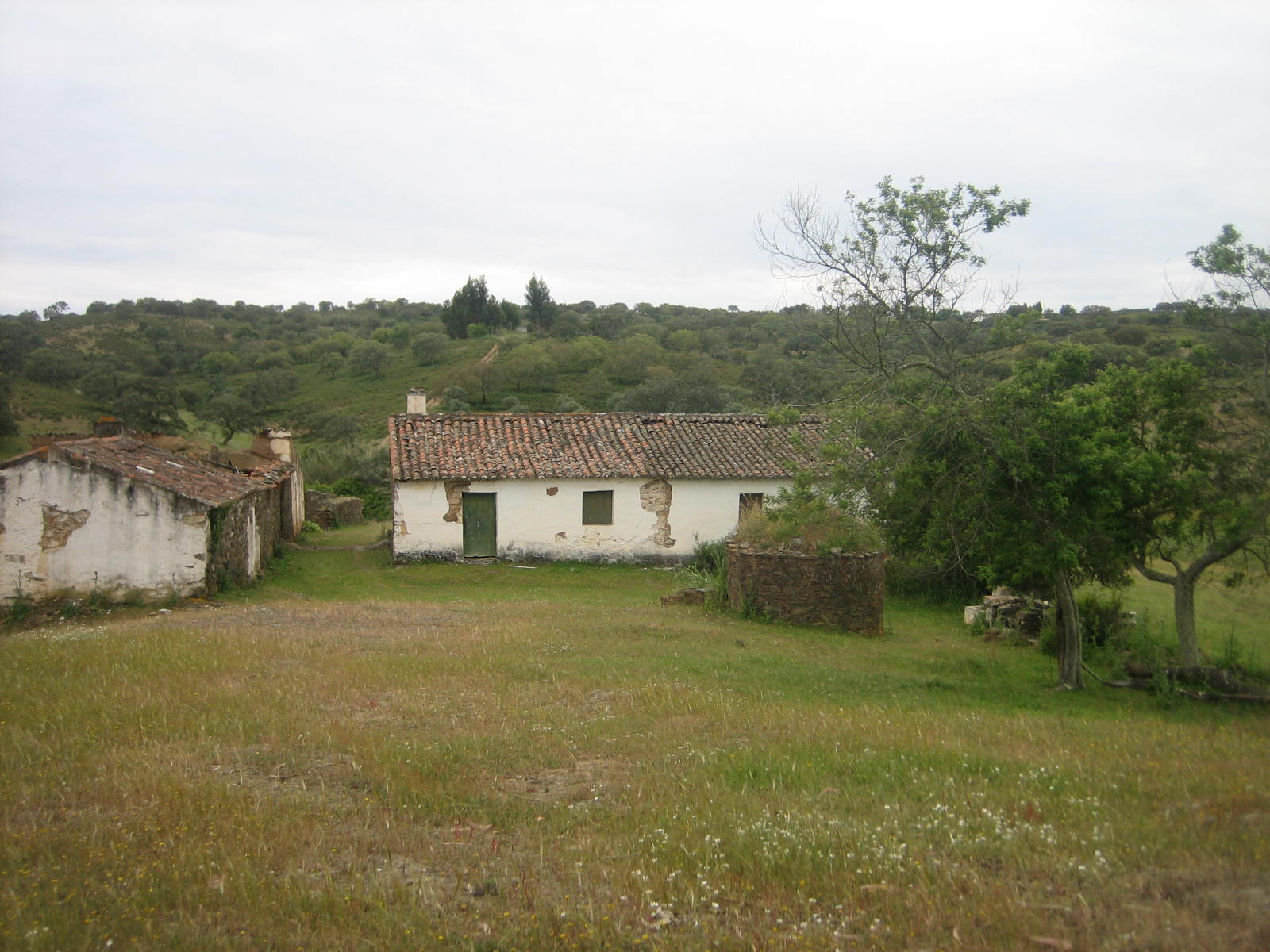 Herdade 10.950 Hectares